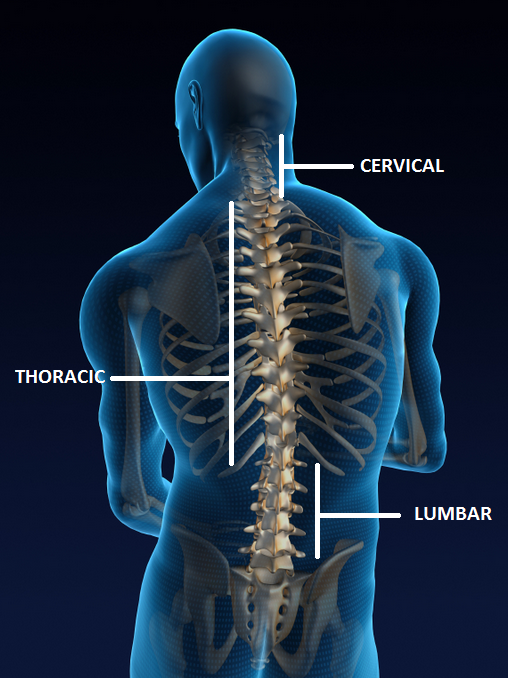 Facet Joint Injections Spine Amp Pain Institute Of New England